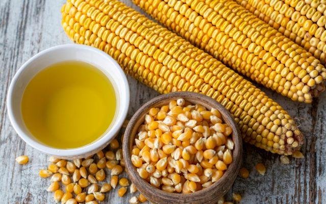Corn oil – an American treasure?
