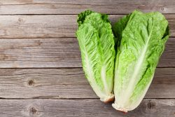 Romaine lettuce in your diet!
