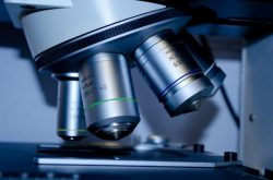 #19 Supplements review – Apollo's Hegemony Magnesium Malate
