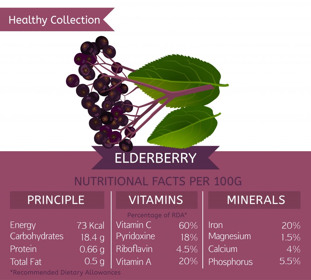 Nutritrional facts about Elderberry