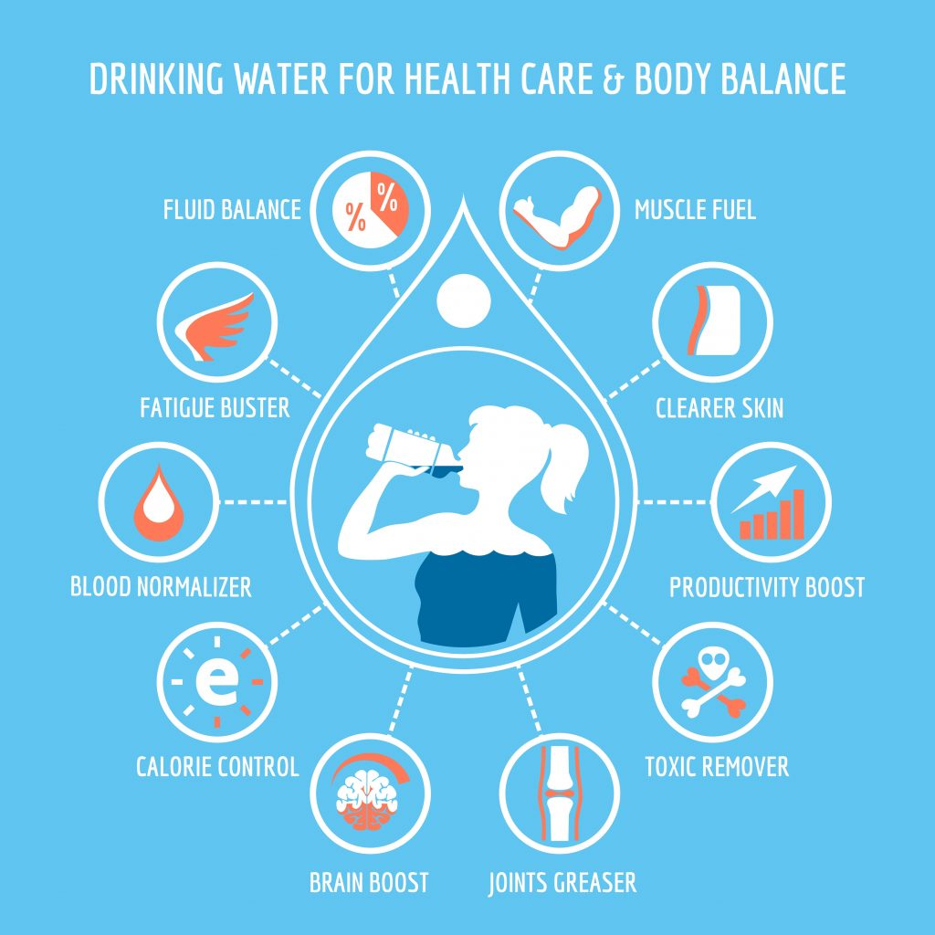 Functions of water inside our body
