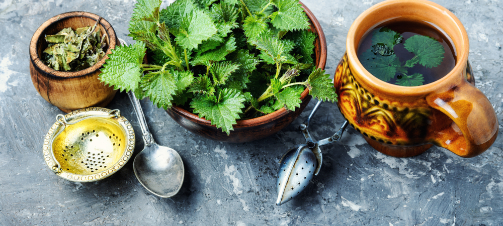 Nettle can be a great base for tea