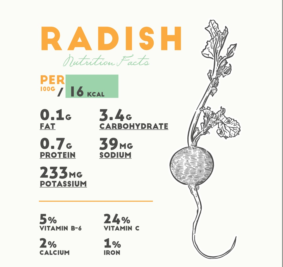 Composition of radishes