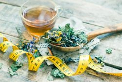Detoxifying body with herbs