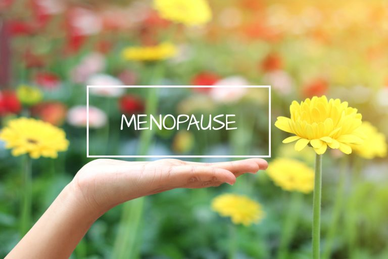 The best diets during the menopause
