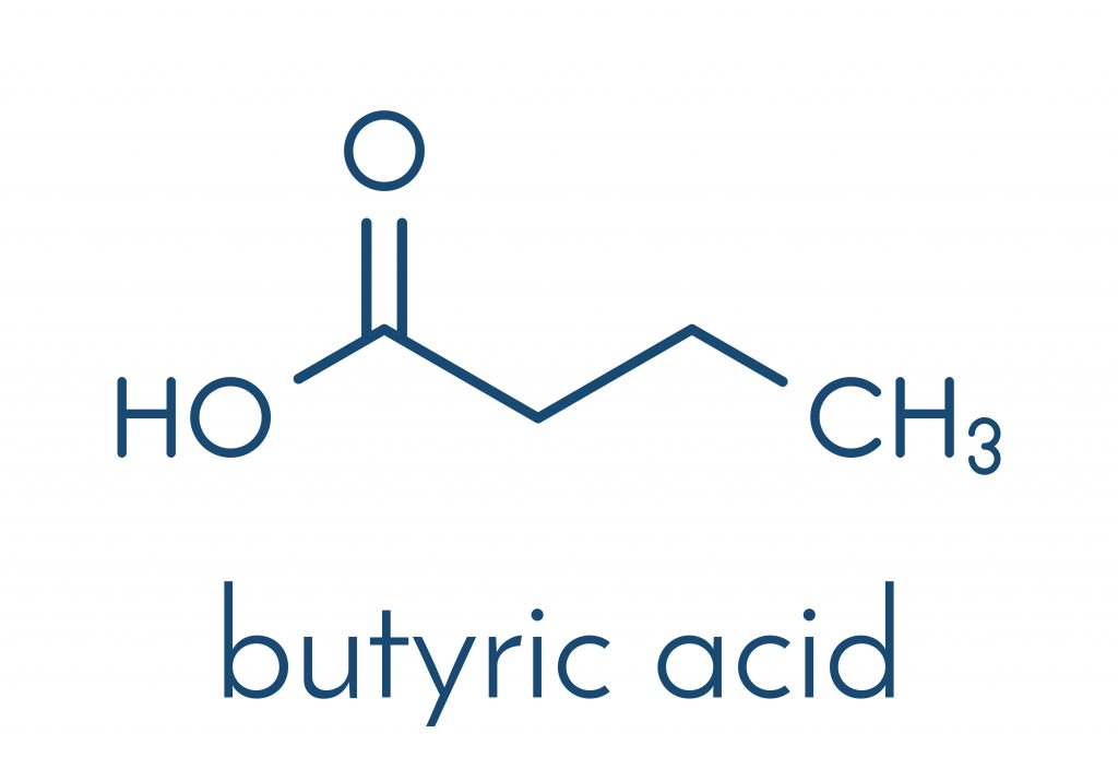 Chemical Structure of Butyric Acid