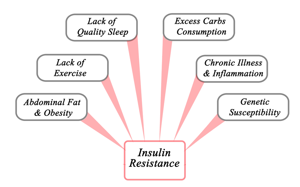 Causes of Insulin Resistance