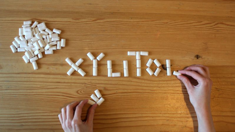 Xylitol – sugar for healthy teeth and strong bones